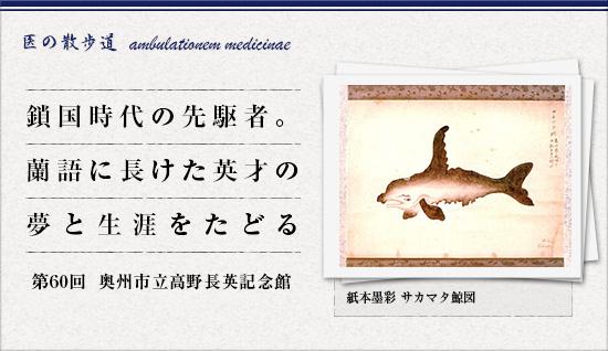 紙本墨彩 サカマタ鯨図